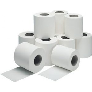 Plain Toilet Tissue Roll 2 Ply